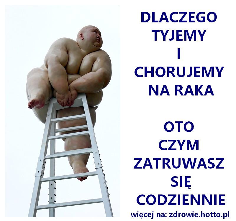 zdrowie.hotto.pl-dlaczego-tyjemy-chorujemy-na-raka-oto-czym-zatruwamy-sie-codziennie