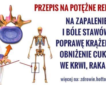ZDROWIE.HOTTO.PL-PRZEPIS-NA-POTEZNE-REMEDIUM-MEDYCYNY-LUDOWEJ-NA-STAWY-RAKA-CUKIER-WE-KRWI-i