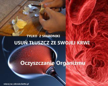 Zdrowie.hotto.pl-oczyszczanie-organizmu-usun-tluszcz-z-krwi-wystarcza-2-skladniki-domowy-sposob
