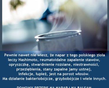 zdrowie.hotto.pl-polskie-ziolo-leczy-hashimoto-opryszczke-rzs-stwardnienie-infekcje-rany-kaszel-katar-i-inne