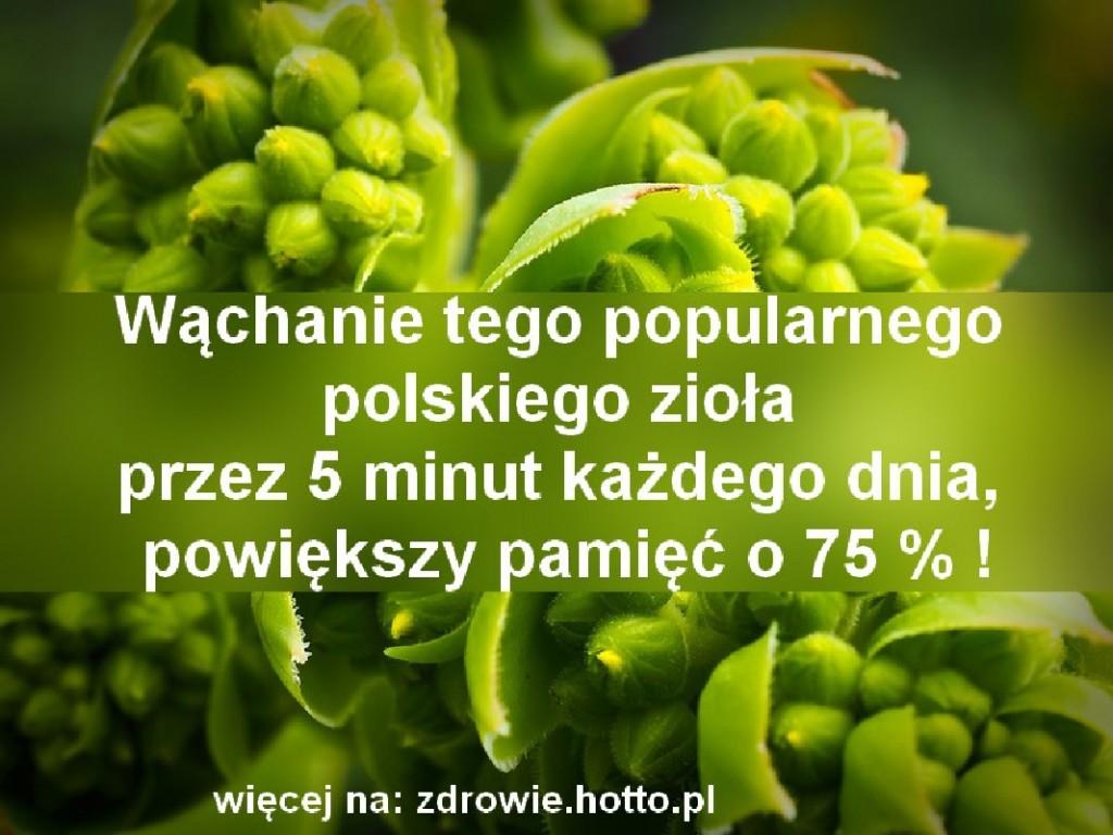 zdrowie.hotto.pl-na-pamiec-na-poprawe-pamieci