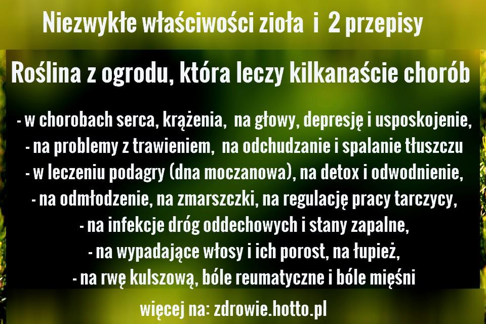 zdrowie.hotto.pl-Niezwykłe właściwości ziola. Roślina z ogrodu, która leczy wypadanie włosów i kilkanaście chorób. PRZEPISY