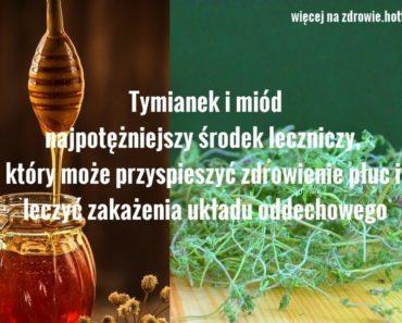zdrowie.hotto.pl-tymianek-miod