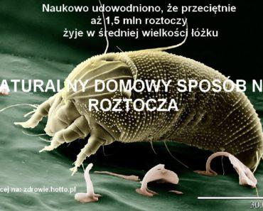 ZDROWIE.HOTTO.PL-NATURALNY-SRODEK-NA-ROZTOCZA-DOMOWY-SPOSOB