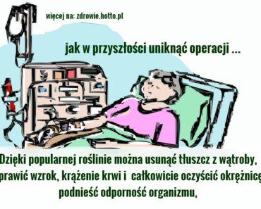 zdrowie.hotto.pl-buraki-odtluszczenie-watroby