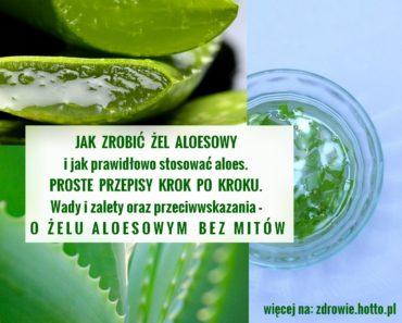 zdrowie.hotto.pl-jak-zrobic-zel-aloesowy-przepisy-jak-stosowac-wady-zalety-przeciwwskazania