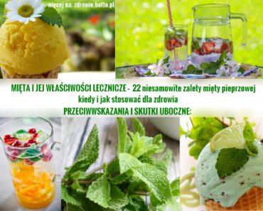 zdrowie.hotto.pl-mieta-jej-wlasciwosci-lecznicze-zastosowanie-przeciwwskazania