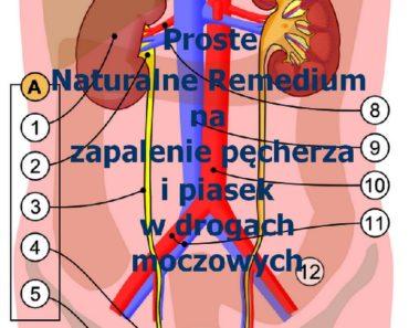 zdrowie.hotto_.pl-naturalne-remedium-na-zapalenia-pecherza-moczowego