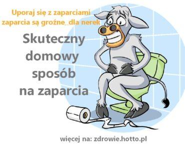 zdrowie.hotto_.pl-skuteczny-domowy-sposob-na-zaparcia-jak-sie-pozbyc-zaparc